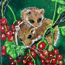 Harvest-Mice-from-Hibernation-Series-Anne-Sawyer