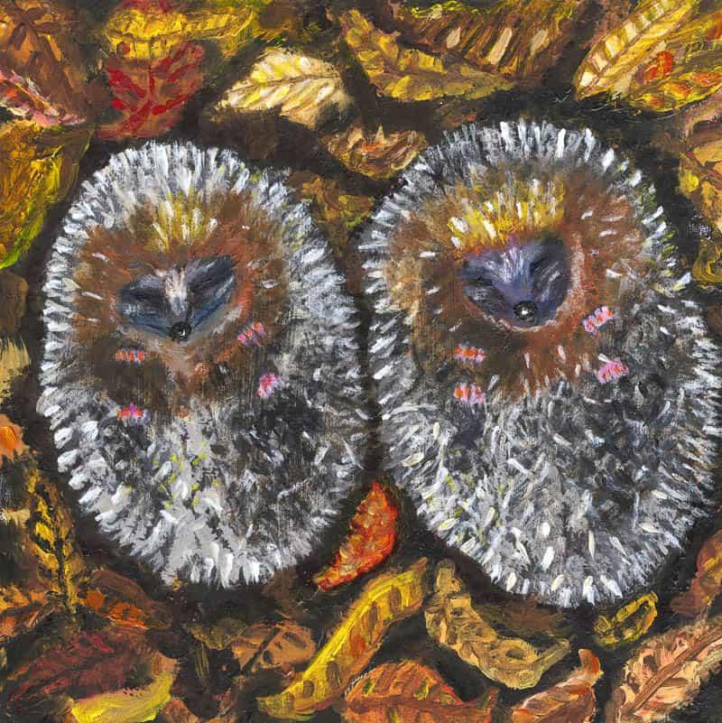 Sleeping Hedgehogs by Anne Sawyer